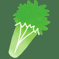 céleri branche