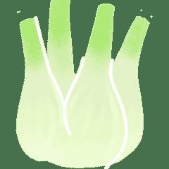 Fruits et Légumes de Septembre Fenouil-legume-saison