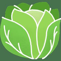Fruits et Légumes de Septembre Laitue-legume-saison