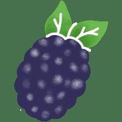 Fruits et Légumes de Septembre Mure-fruit-saison